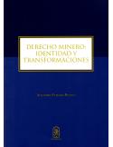 DERECHO DE MINERIA: IDENTIDAD Y TRANSFORMACIONES