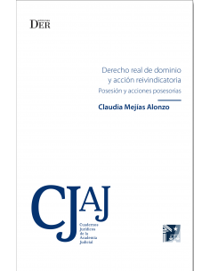 DERECHO REAL DE DOMINIO Y ACCIÓN REINVINDICATORIA - Posesión y Acciones Posesorias