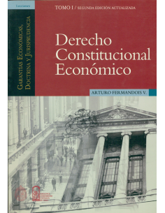 DERECHO CONSTITUCIONAL ECONOMICO - TOMO I