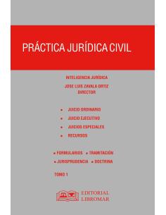 PRÁCTICA JURÍDICA CIVIL - 2 TOMOS - PRÁCTICAS FORENSES Y DERECHO PROCESAL CIVIL