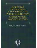 DERECHOS DE MINORÍAS NACIONALES Y DE PUEBLOS INDÍGENAS