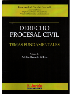 DERECHO PROCESAL CIVIL - TEMAS FUNDAMENTALES