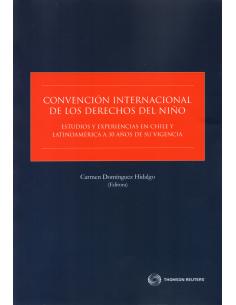 CONVENCIÓN INTERNACIONAL DE LOS DERECHOS DEL NIÑO. ESTUDIOS Y EXPERIENCIAS EN CHILE Y LATINOAMÉRICA A 30 AÑOS DE SU VIGENCIA