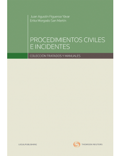 PROCEDIMIENTOS CIVILES E INCIDENTES